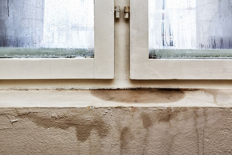 water dripping through a window in the home