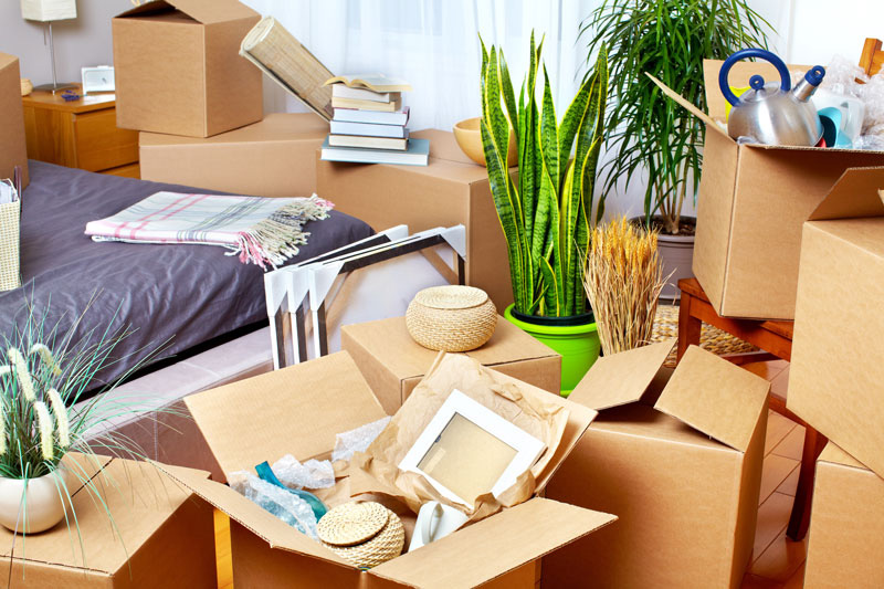 moving-boxes-in-a-home