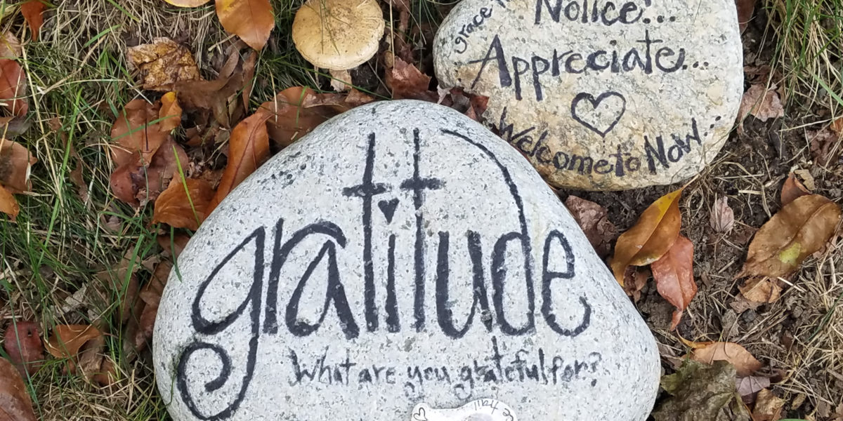 6 Reasons Why You Should Practice Gratitude
