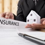 Homeowners Insurance Policy Cover Dead Tree Removal